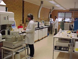 Man standing in laboratory